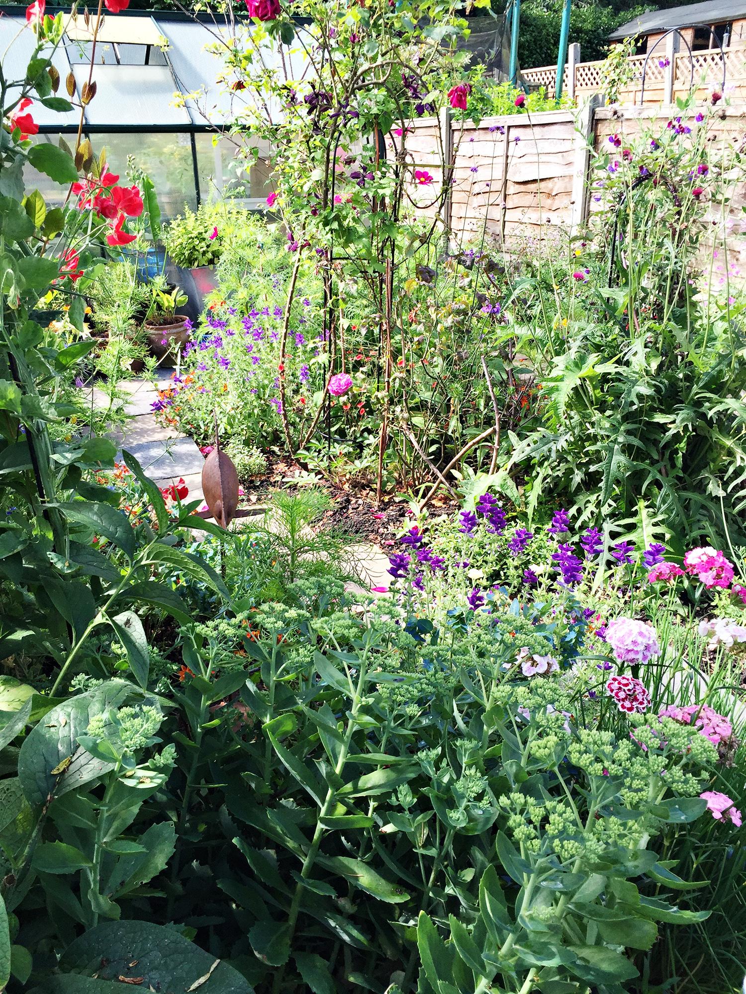 Garden July